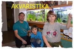 akvaristi